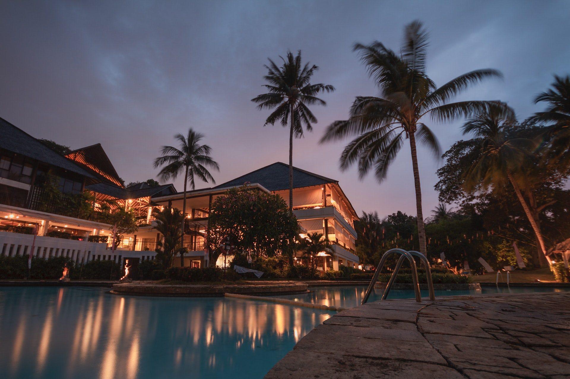 palm-trees-at-night-258154